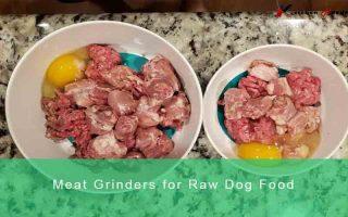 best meat grinder for Raw dog food